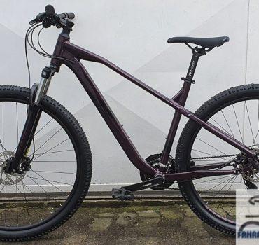 29 Zoll Mountainbike von Raymon HardRay 2.0