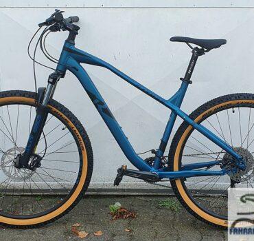 29 Zoll Mountainbike von Raymon HardRay Nine 4.0